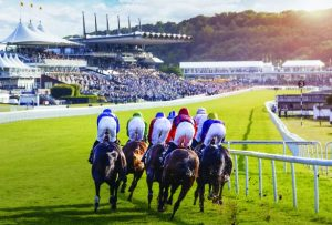 where to stay for goodwood